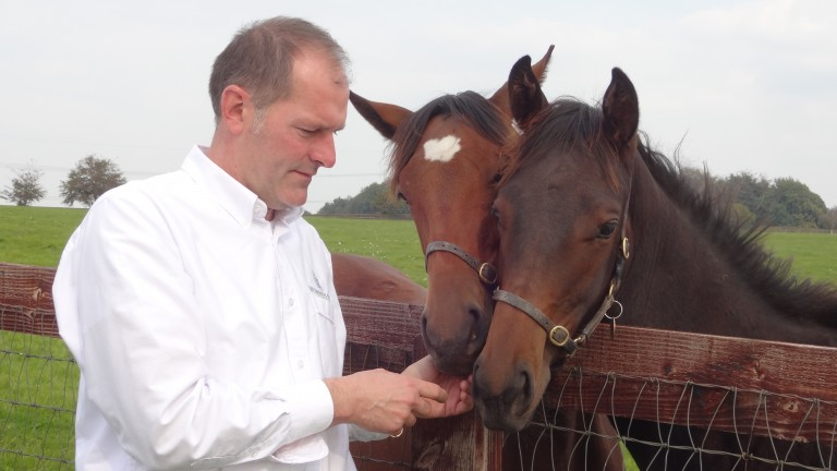 Tony Fry: enjoying working with horses on the Sussex Downs