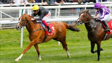 Stradivarius and Frankie Dettori capture the Yorkshire Cup ahead of Southern France