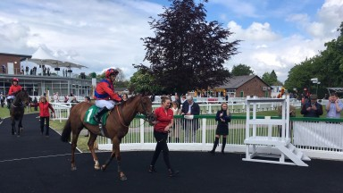 Duke Of Firenze returns to the winner's enclosure for the first time in two years
