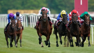 Headman (centre) gave Roger Charlton another winner in the London Gold Cup