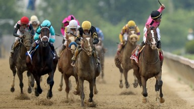 War Of Will (right): Tyler Gaffalione celebrates winning the Preakness