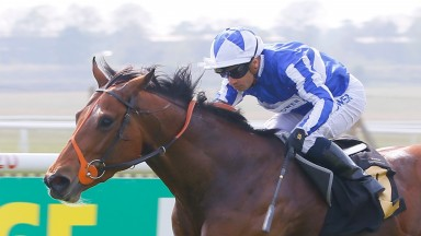 Fox Champion: German 2,000 Guineas winner could head to Royal Ascot next