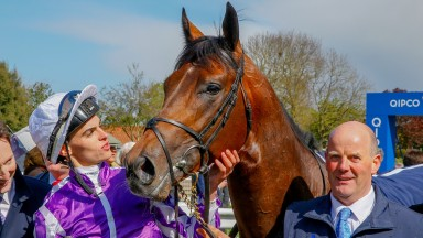 Magna Grecia looks to follow up his 2,000 Guineas success at Newmarket with another at the Curragh
