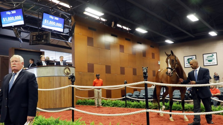 Fasig-Tipton holds its July sale on Monday