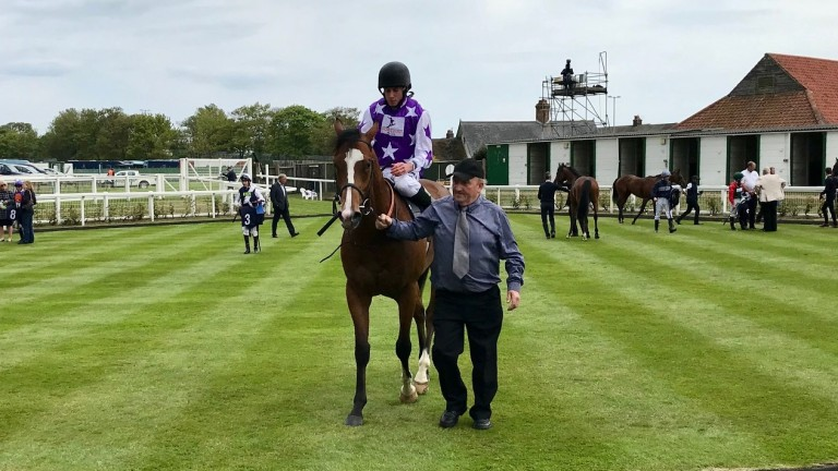 Maxi Boy: runs in Superlative Stakes for Michael Bell