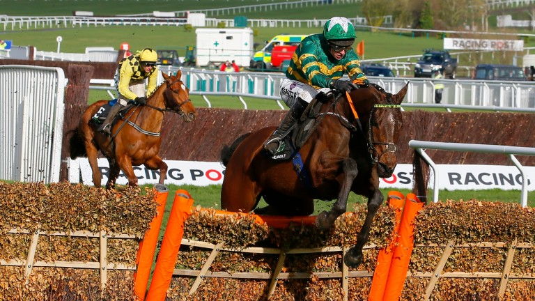 Espoir d'Allen (Mark Walsh) out on his own over the last in the Champ[ion Hurdle at Cheltenham in March