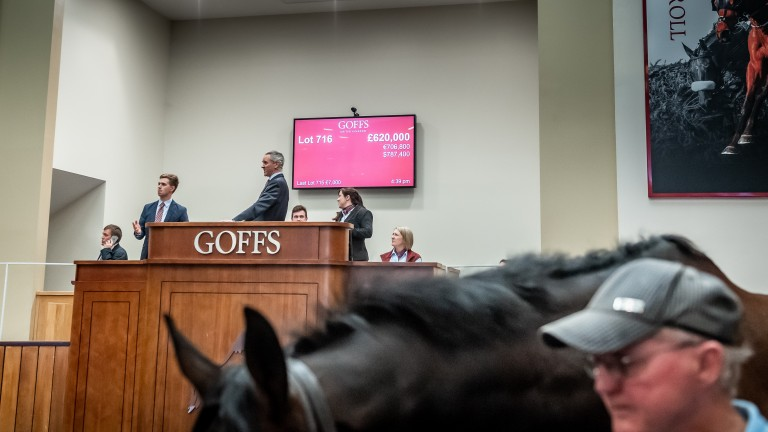 The Goffs UK bid board shows the record-breaking sum of £620,000