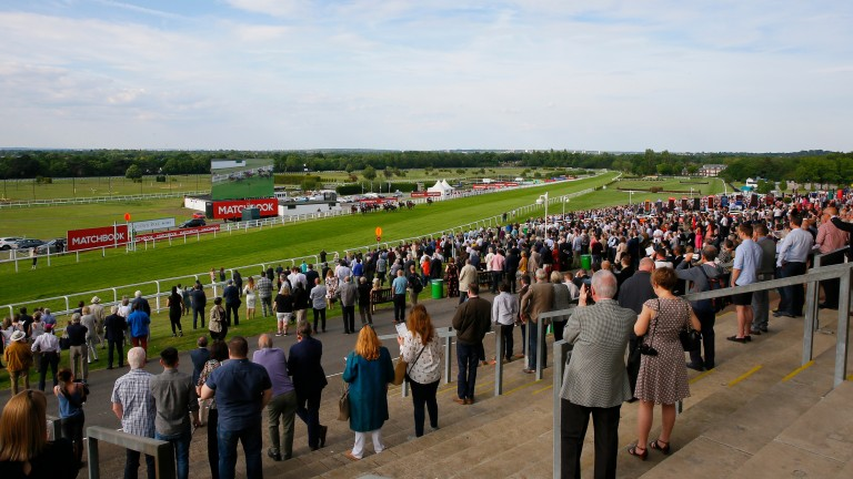 The Coral-Eclipse takes place at Sandown on Saturday