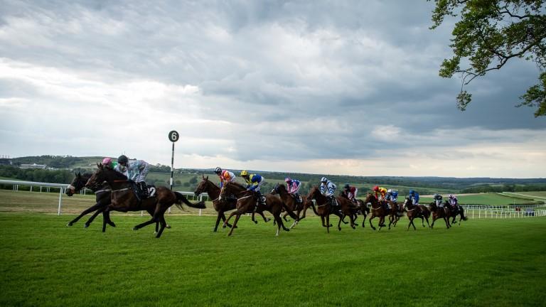 Goodwood: races again on Friday