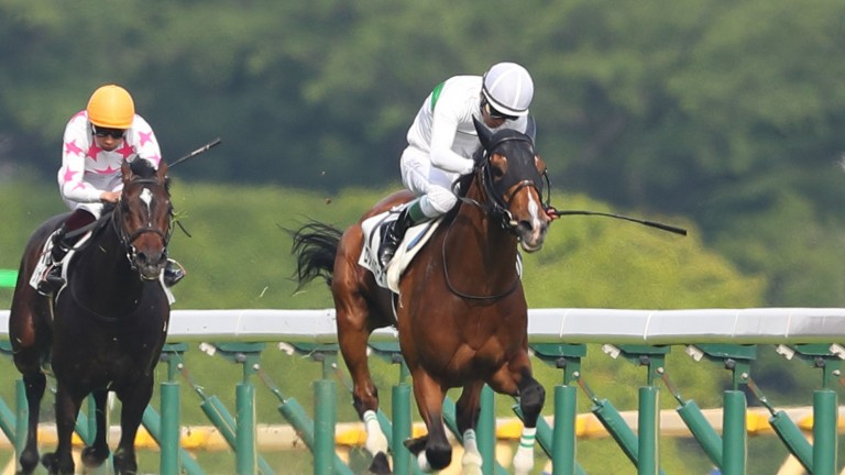 Roger Barows on his way to winning the Japanese Derby at Tokyo