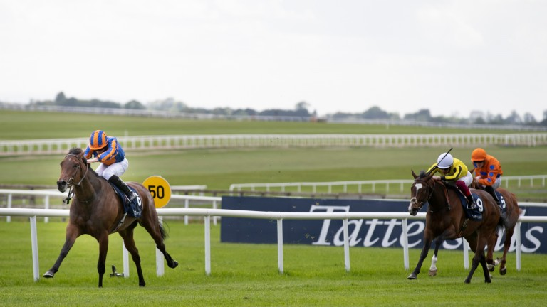 Hermosa was miles too good for the opposition in the Irish 1,000 Guineas