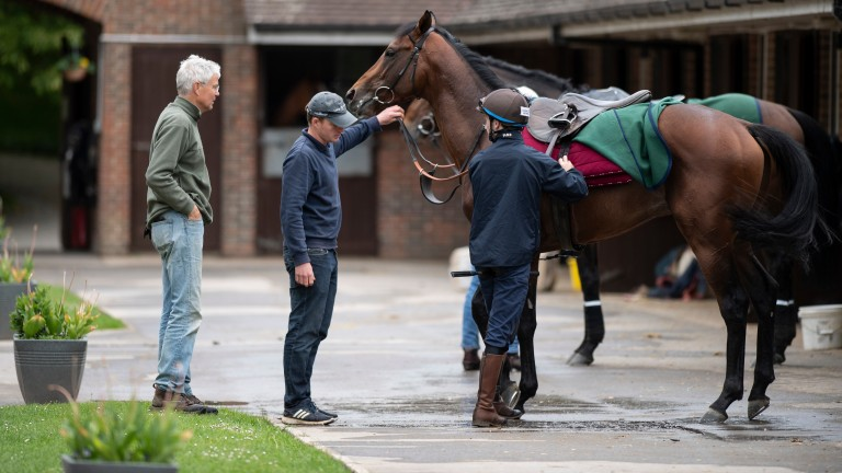 Hughie Morrison and Telecaster at Summerdown Stables ahead of last season's Derby bid