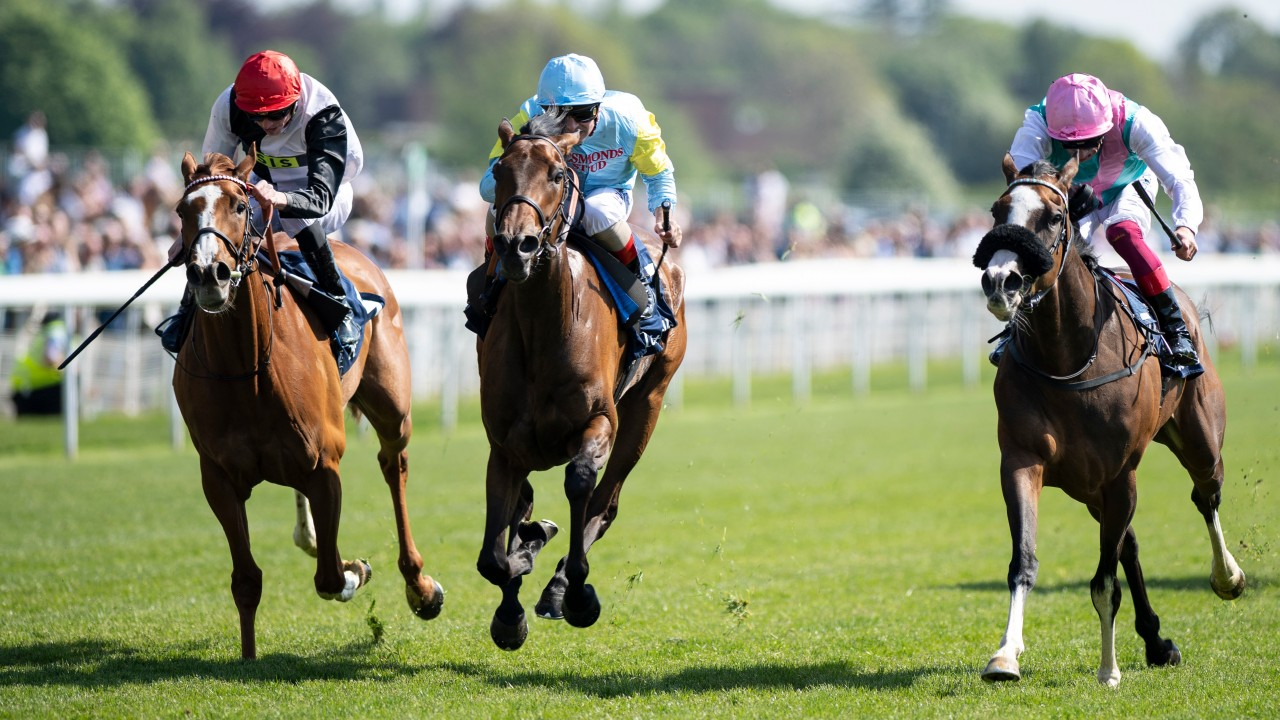There's only one Oaks so we'll give it a go' - Haggas aims