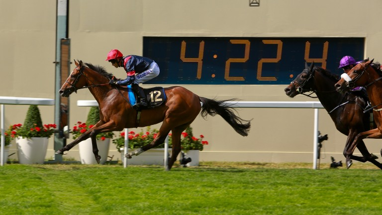 Trip To Paris lands the Gold Cup at Royal Ascot in 2015
