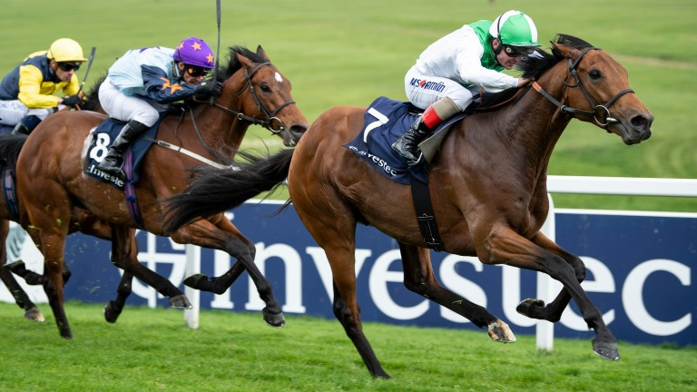 Dual Epsom winner Mountain Angel is bidding for his biggest victory