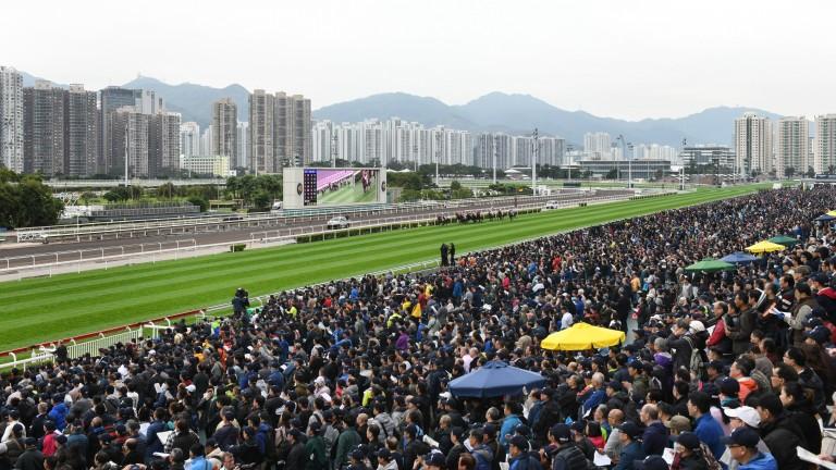 Sha Tin: racing on Monday