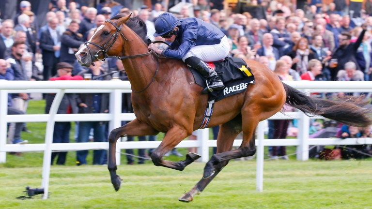 Anthony Van Dyck: made all in the Prix Foy
