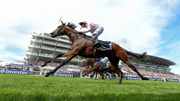 Anthony Van Dyck: won the Derby at Epsom