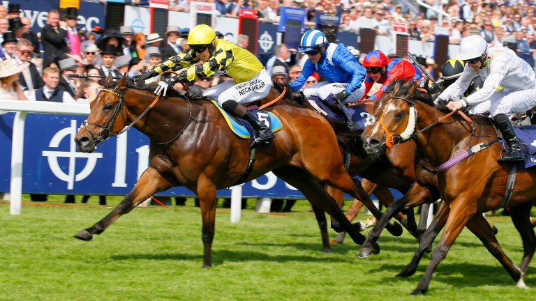 """One of Phil Dennis's biggest career victories to date come on Ornate (yellow silks) in the """"Dash"""" on 2019 Derby Day"""