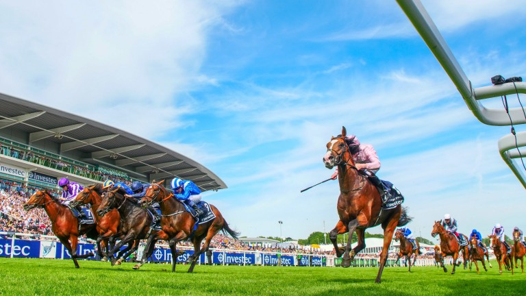 Anthony Van Dyck: won last year's Investec Derby at Epsom