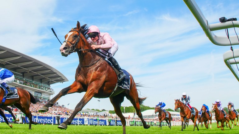 Anthony Van Dyck: bids to follow up Derby win