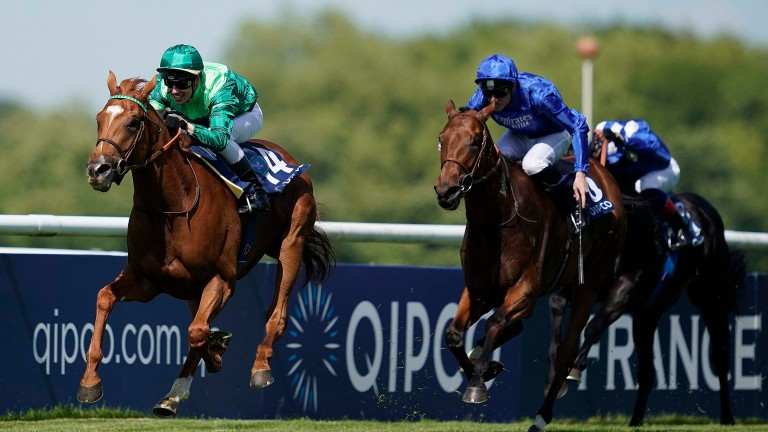 Sottsass: likely to miss the Juddmonte International in favour of quieter Arc prep in France