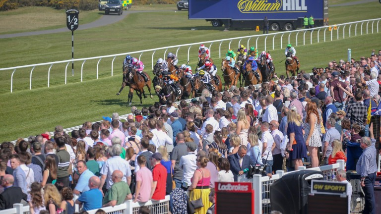 Musselburgh: race on Wednesday afternoon