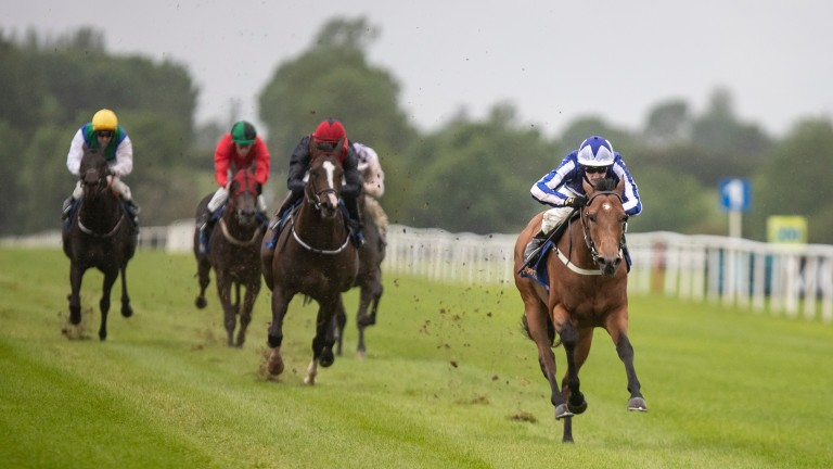 Sunday Sovereign has been declared for the Norfolk Stakes