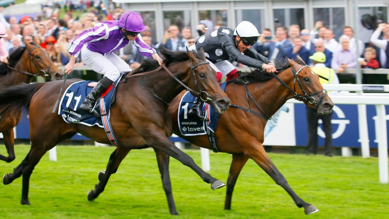 Pink Dogwood (left) is aiming for a first Group 1 win in the Pretty Polly stakes