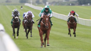 Micro Manage goes up to 109 after his Curragh success and has myriad options available