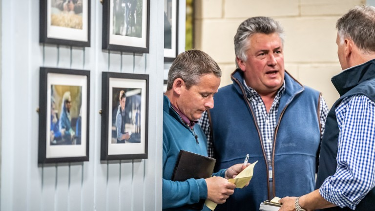 Tom Malone and Paul Nicholls make another acquisition