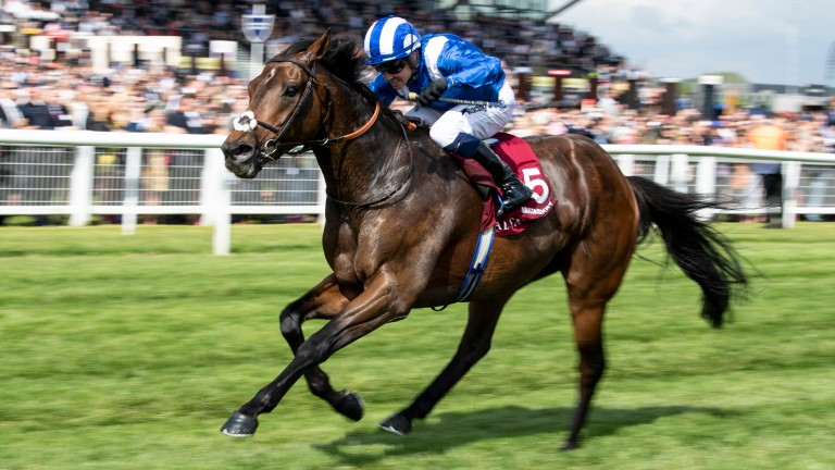 Mustashry: stiff finish should suit at Royal Ascot, says Crowley