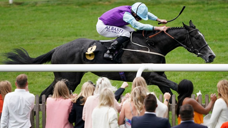 Visinari: trainer Mark Johnston says the colt is his best chance of a Royal Ascot winner if he runs in the Coventry