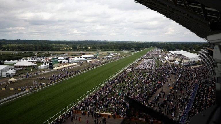 Conditions are continuing to dry at Ascot