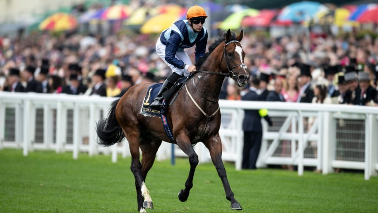 Accidental Agent canters back under Charles Bishop after disgracing himself in the Queen Anne Stakes