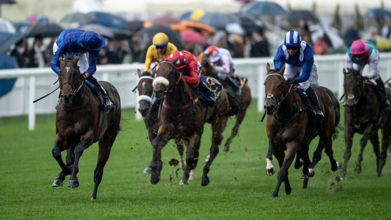 James Doyle is able to steal a look back aboard Blue Point in the King's Stand