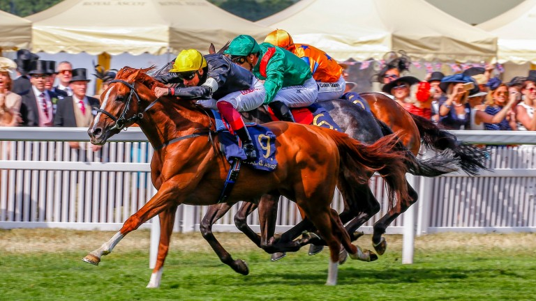 Stradivarius and Frankie Dettori beat Vazirabad and Torcedor in the 2018 Gold Cup