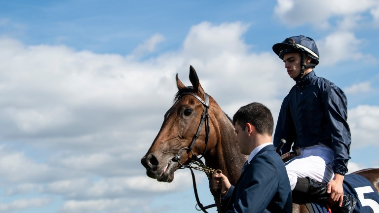 Fleeting (Donnacha O'Brien) after the May Hill StakesDoncaster 13.9.18 Pic: Edward Whitaker