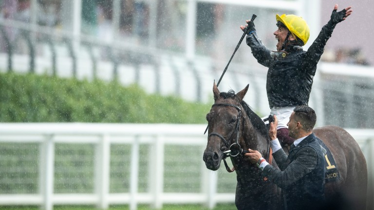 Crystal Starlet is out of a Listed-winning Dubawi half-sister to Crystal Ocean