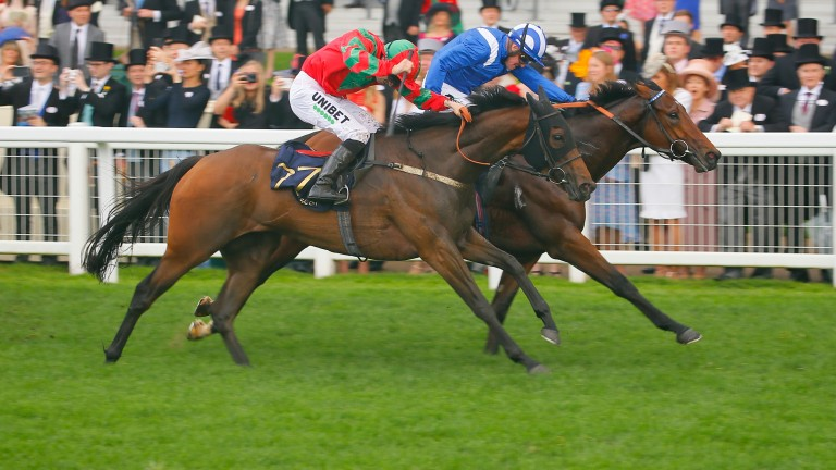 Afaak (blue) landed the Royal Hunt Cup under Jim Crowley last month