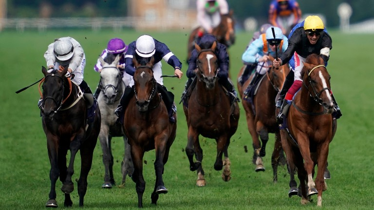 Stradivarius: battles with Master Of Reality (white cap) and Dee Ex Bee