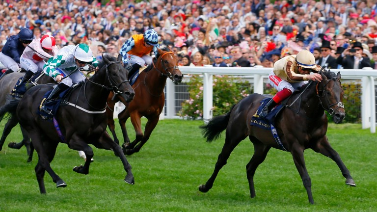 A'Ali: Norfolk Stakes winner is likely to run in the Prix Morny next time after Papin victory