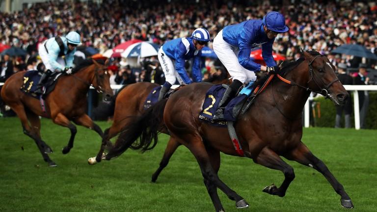 Blue Point: star sprinter was retired on Monday
