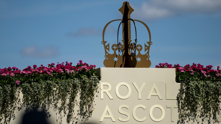 Royal Ascot: will have a very different programme this season