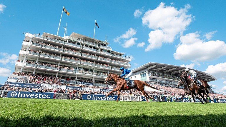 Masar: the 2018 Derby winner has been retired