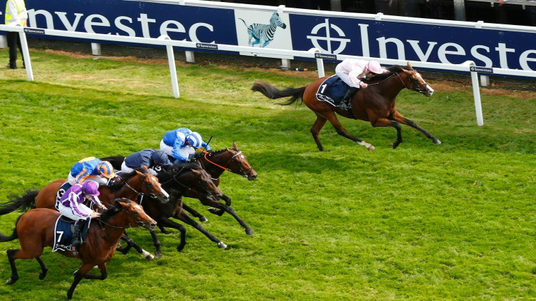 Sir Dragonet (navy): finished a close-up fifth behind Anthony Van Dyck in the Derby