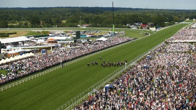 Royal Ascot, where highly visible security kept down the incidences of bad behaviour