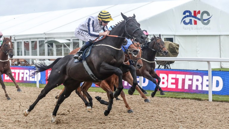 LINE OF REASON jumping well before the line, prospect hurdler with Oisin Murphy when winning at Newcastle 30/6/17Copyright photograph by Grossick Racing Photography 0771 046 1723