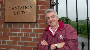 PIX OF RYANAIR SUPREMO MICHAEL O'LEARY AT HIS PLANTATION STUD IN NEWMARKET.