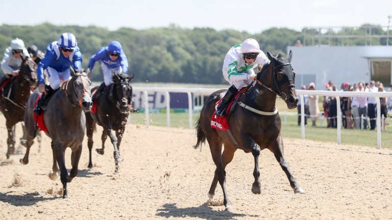 Above The Rest, winning last year's Chipchase at Newcastle